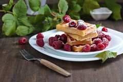 Waffles with raspberry Royalty Free Stock Images