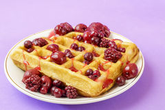 Waffles with red berries Stock Photo