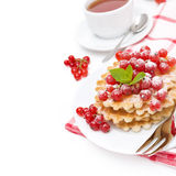 Waffles with red currant, sprinkled powdered sugar for breakfast Royalty Free Stock Image