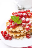 Waffles with red currant, sprinkled powdered sugar for breakfast Royalty Free Stock Photo