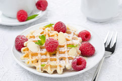 Waffles, sprinkled with powdered sugar, fresh raspberries Stock Image