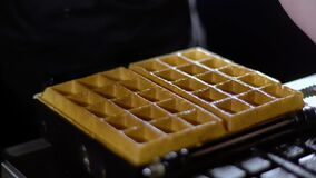 Waffles are taken from a waffle iron / cooked waffles stock video