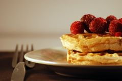 Waffles topped with Rasberries Stock Photography