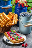 Waffles with whipped cream and berry fruit Stock Images