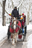 Wagen-Fahrt im Winter Stockfoto