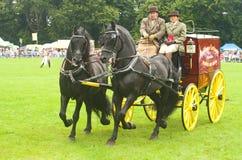 Wagen gezeichnet durch Paare Pferde. Lizenzfreie Stockfotos