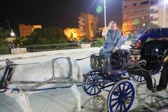 Wagen mit Pferd Stockfoto