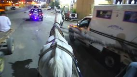 Wagen mit Pferdvideo HD stock video