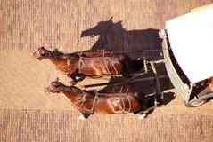 Wagen mit zwei Pferden Stockbilder