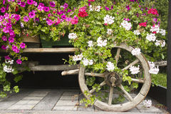 Waggon decorated with flowers Royalty Free Stock Images
