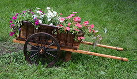 Waggon with flowers Royalty Free Stock Images