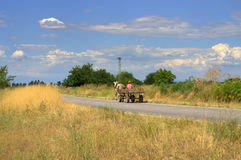 Waggon on summer country road Royalty Free Stock Images