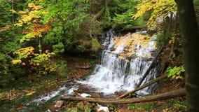 Wagner Falls in autumn - Munising Michigan. Wagner Falls Scenic Site near Munising Michigan in the Upper Peninsula. Autumn colors surround this scenic waterfall stock footage