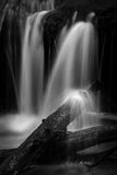 Wagner Falls B&W Detail Royalty Free Stock Photo