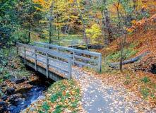 Wagner Falls Bridge Lizenzfreie Stockfotos