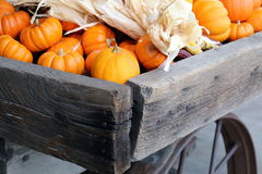 Wagon Filled with Miniature Pumpkins Stock Photography