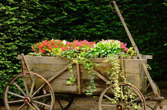 A wagon of flowers Stock Photography