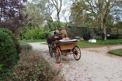 Wagon horses. In a city park of Caldas da Rainha - Portugal Royalty Free Stock Photography