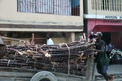 Wagon-load of sugar cane. Royalty Free Stock Images