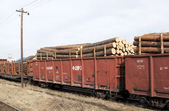 Wagon with logs - RAW format stock photos