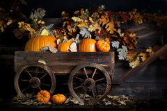 Wagon with Pumpkins Royalty Free Stock Image