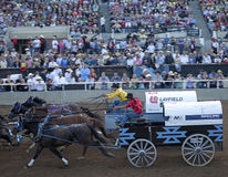 Wagon racing, Calgary Stock Image