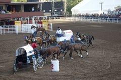 Wagon racing, Calgary Stock Photography