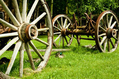 Wagon remains. Remains of an old wagon providing shelter to ducks Royalty Free Stock Images