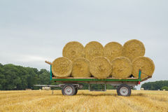 Wagon with straw Stock Photography