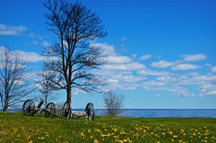 Wagon Trailers. Sitting by a bare tree on a green lawn with dandelions along Lake Michigan at Fayette Historic Townsite Stock Image