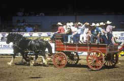 Wagon train, Fiesta Rodeo Royalty Free Stock Images