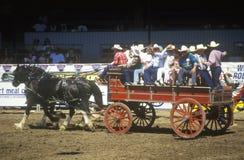 Wagon train, Fiesta Rodeo, Stock Horse show, Earl Warren Showgrounds, Santa Barbara, CA Stock Photography