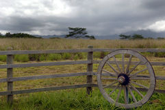 Wagon Wheel. An old wagon wheel on the farm Royalty Free Stock Photography