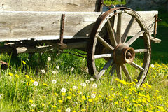 Wagon wheel. Rusty country wagon sitting in picture perfect setting royalty free stock photos