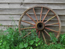 Wagon wheel against old board wall. Royalty Free Stock Images