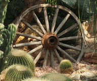 Free Wagon Wheel And Cacti Royalty Free Stock Images - 56709609