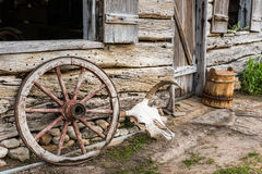 Wagon Wheel and Cow Skull Stock Photos