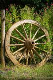 Wagon wheel displayed as a garden decoration Stock Photography