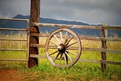 lone wagon wheel in Hawaii Stock Photos