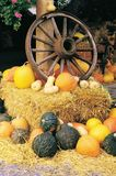 Wagon Wheel On A Hay Bale Surrounded Squash Stock Image