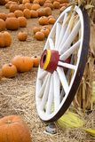 Wagon Wheel Pumpkin Patch. A wagon wheel leans against a cornstalk.  Pumpkin patch and hay covered ground shown Stock Photography