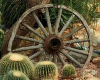Wagon Wheel With Several Cacti stock photography