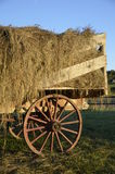 Wagon with wood wheel full of loose hay Royalty Free Stock Images