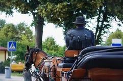 Wagoner con il cappello di cuoio che si siede in un trasporto Fotografia Stock Libera da Diritti