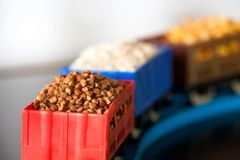 Wagons with grain of buckwheat, rice and peas. Grain Cultures. Wagons with grain of peas, rice and buckwheat. Grain Cultures. Selective focus royalty free stock images