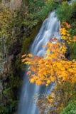Wah Gwin Gwin Falls in Autumn Stock Photos