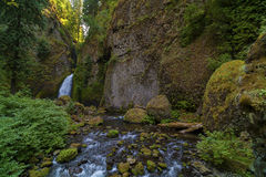 Wahclella在哥伦比亚河峡谷下跌秋天 免版税库存图片