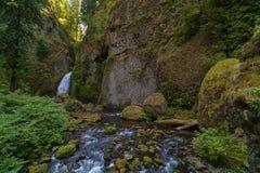 Wahclella baja las caídas en la garganta del río Columbia imagen de archivo libre de regalías
