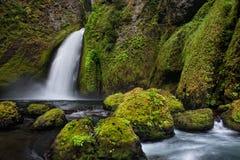 Free Wahclella Falls Stock Photography - 31490712