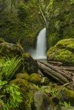 Wahclella  Falls Stock Image